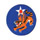 14th Air Force Insignia