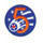 5th Air Force Insignia